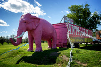 RT 66 Pink Elephant Antique mall - Livingston IL